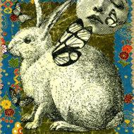 Moon And Rabbit - Maita Robinson