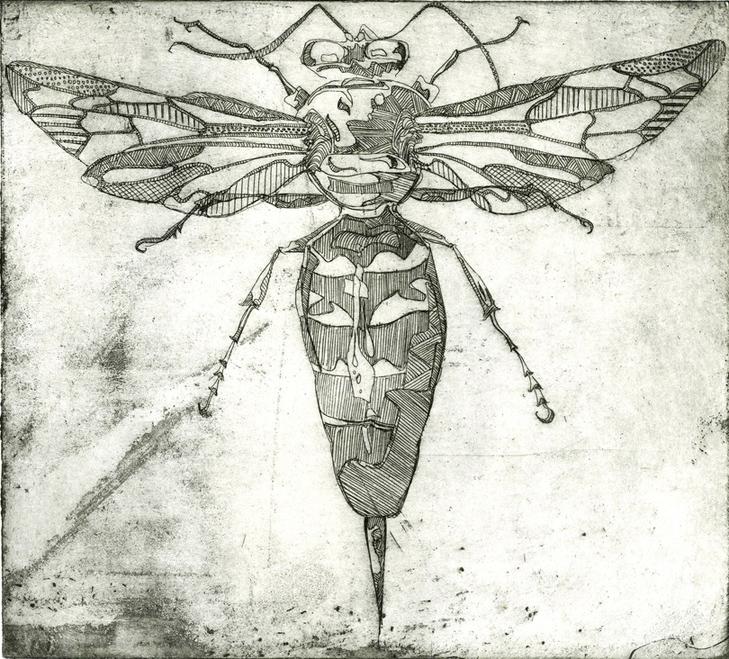 Wasp Etching - Rosie Mclay