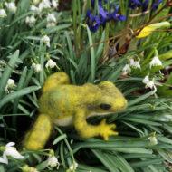 Frog In Flowers - Emma Holden