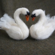 Swans, Face To Face - Emma Holden