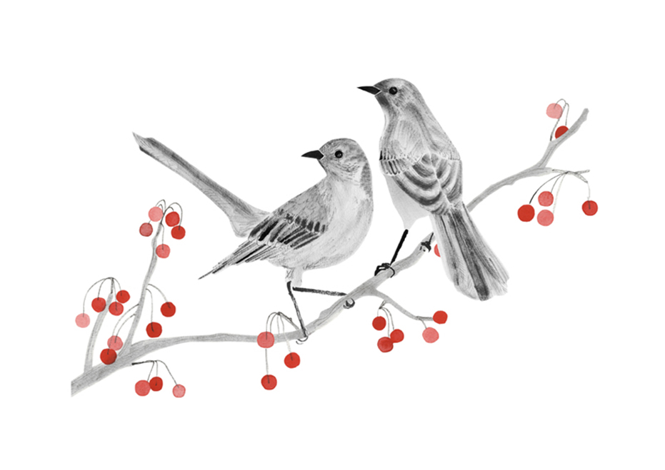 Mockingbirds - Hannah Bailey