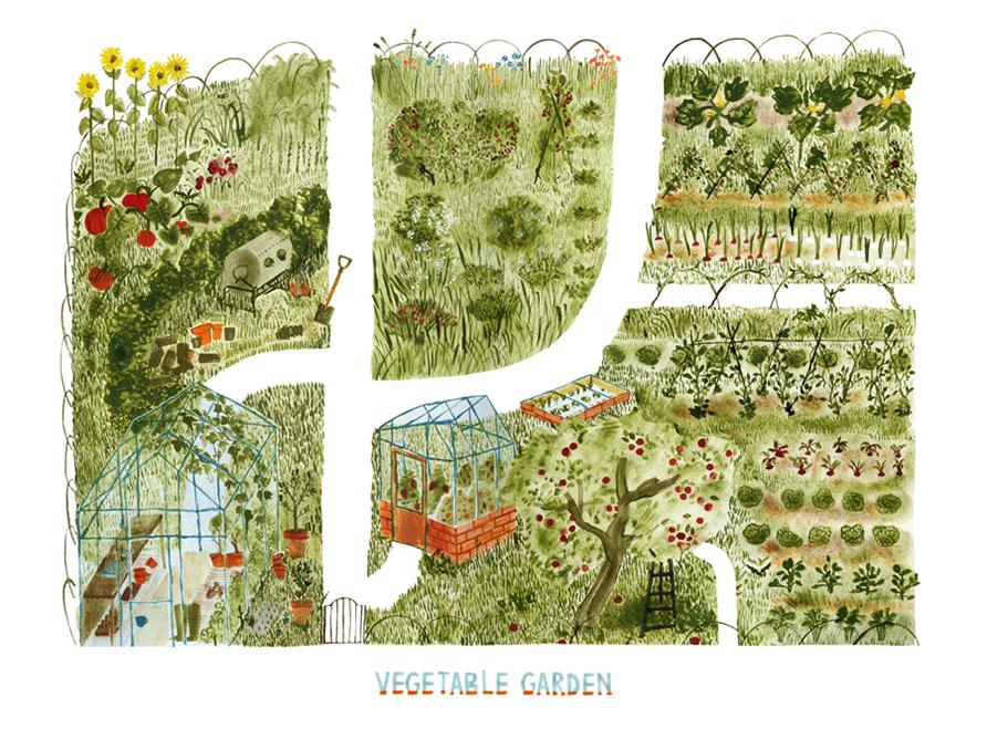 Veg Garden - Hannah Bailey
