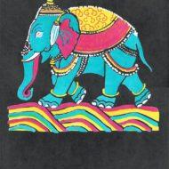 Indian Elephant On Black - Thomas Chadwick