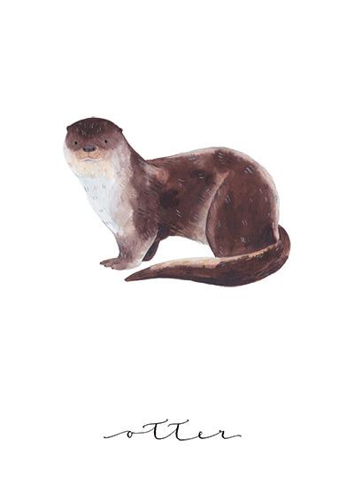 Otter - Jess Hinsley
