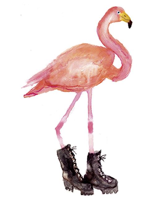Flamingo - Rosie Webb