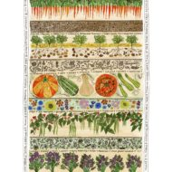 Vegetable Patch - Fiona Willis