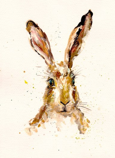 hare 2 - Kate Field