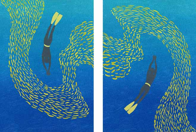 Shoal 1 And 2 - Susanna Clasby
