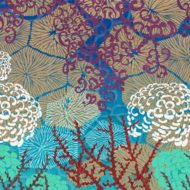 Coral Harmony By Day - Susanna Clasby