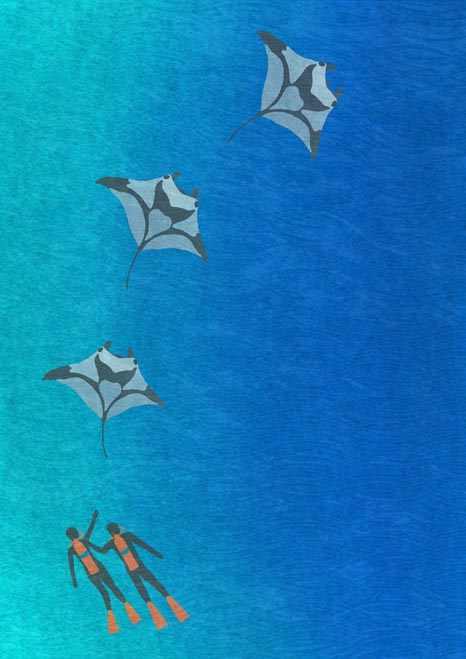 Divers And Mantas - Susanna Clasby