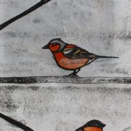 Garden Birds - Molly Lemon