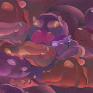 Hippos - Susanna Clasby
