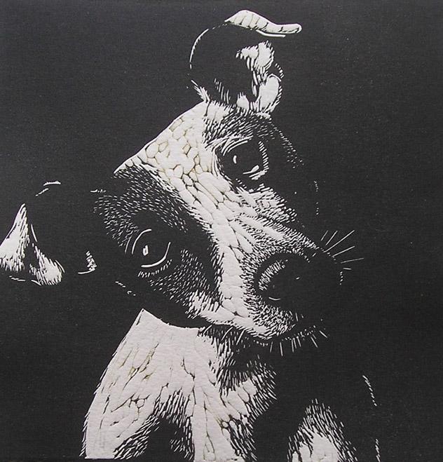 Jack - mary collett