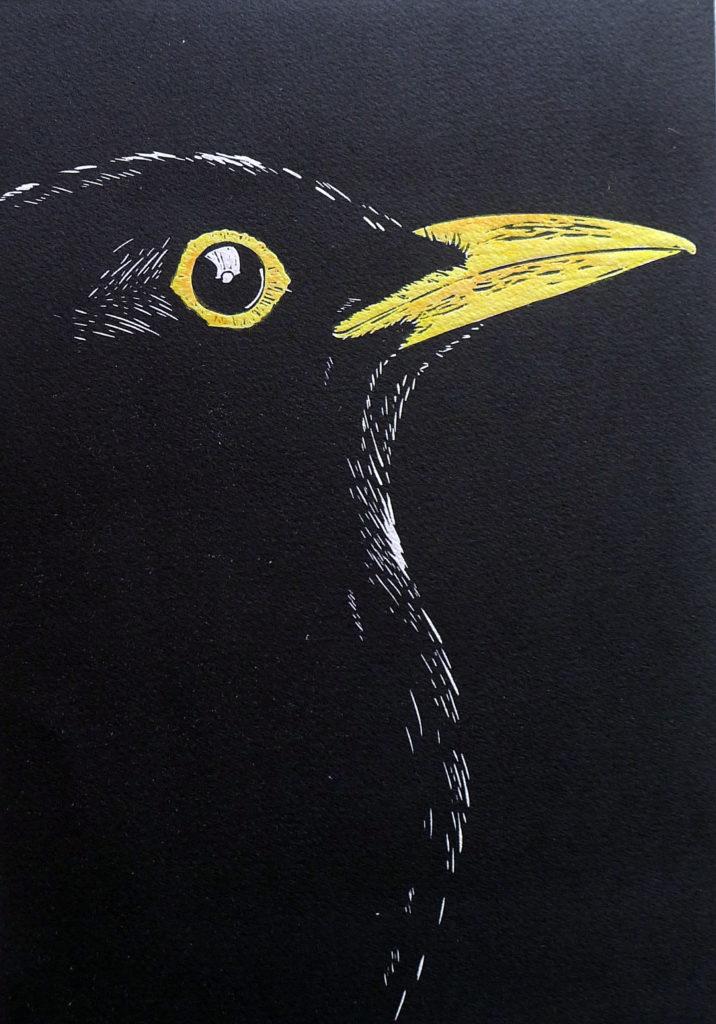 Blackbird - mary collett