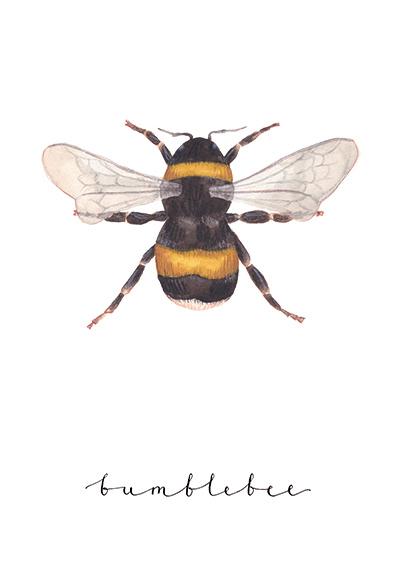 Bumblebee - Jess Hinsley