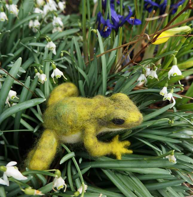 Frog In Flowers - Emma Holden