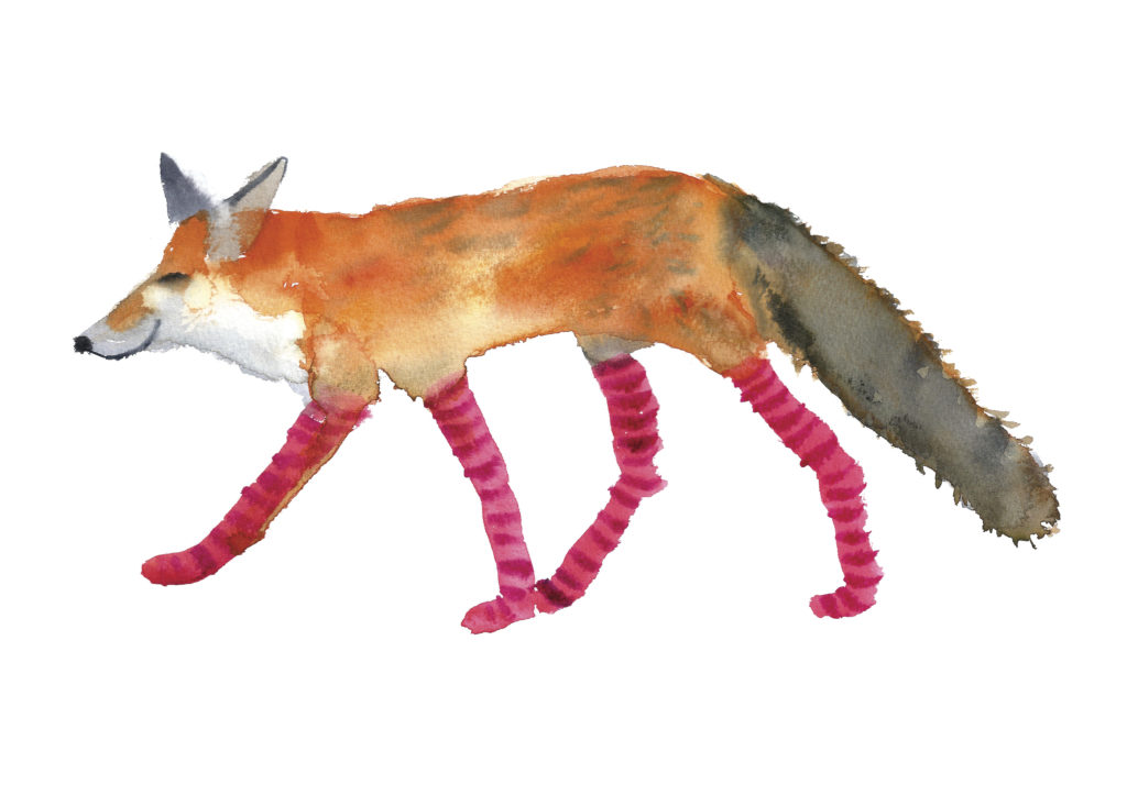Fox In Socks - Rosie Webb