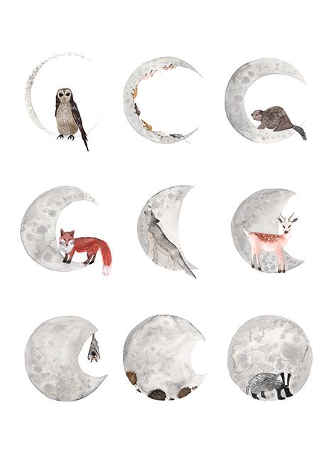 Moon Phase - Hattie Buckwell