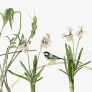 Orchids And A Great Tit - Lindsay McDonagh
