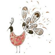 Peacock - Safa Aslam