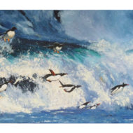 Penguins surf the Southern Ocean - Anna Duckworth