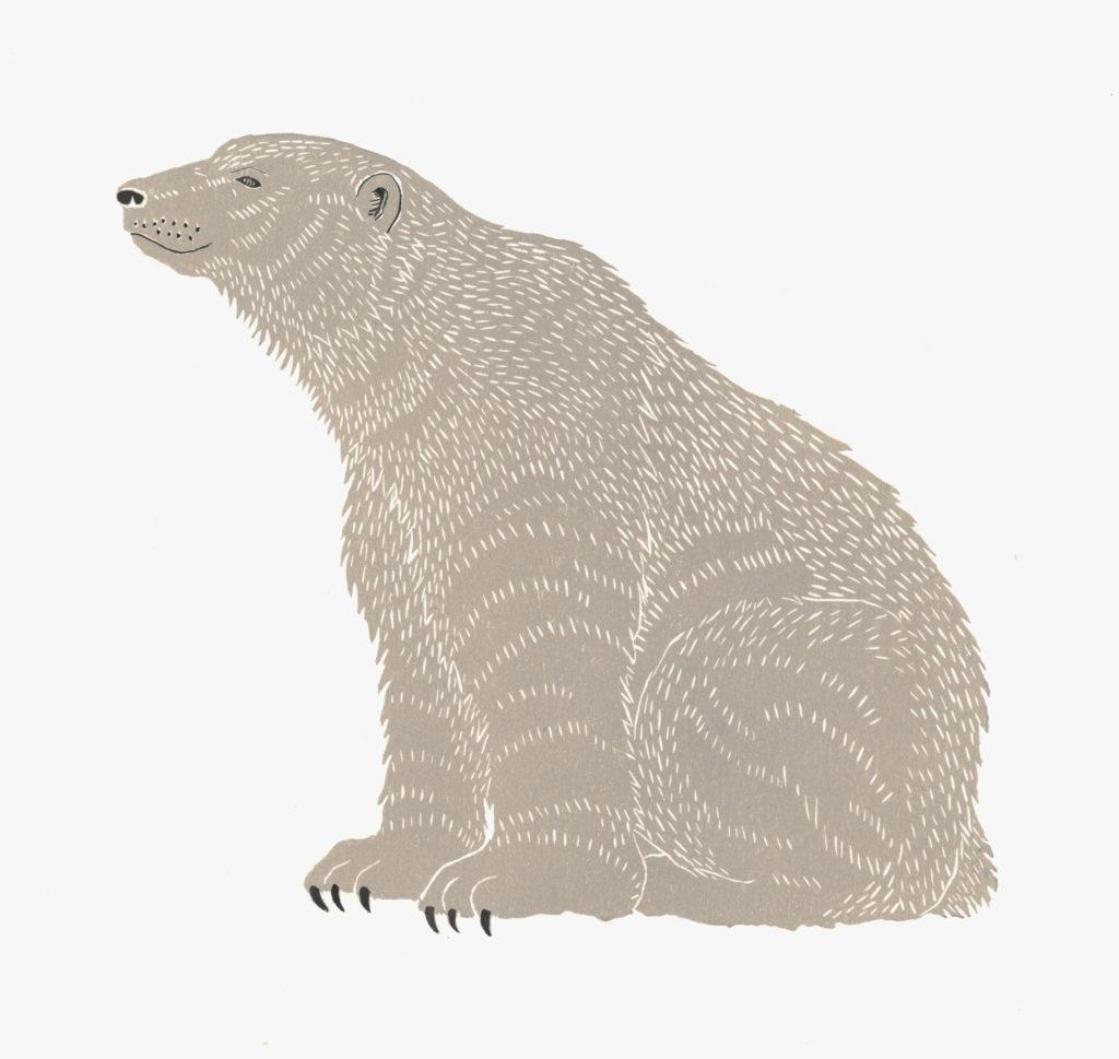 Polar Bear - Lindsay McDonagh