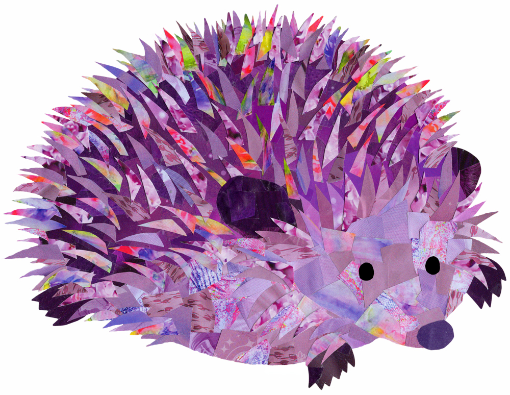Purple Hedgehog - Hollycollage