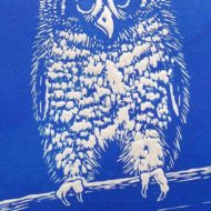 blue owl mary collett