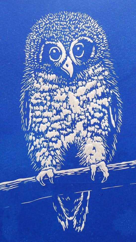 blue owl mary collett