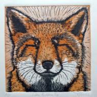 Tinted Fox - Mary Collett
