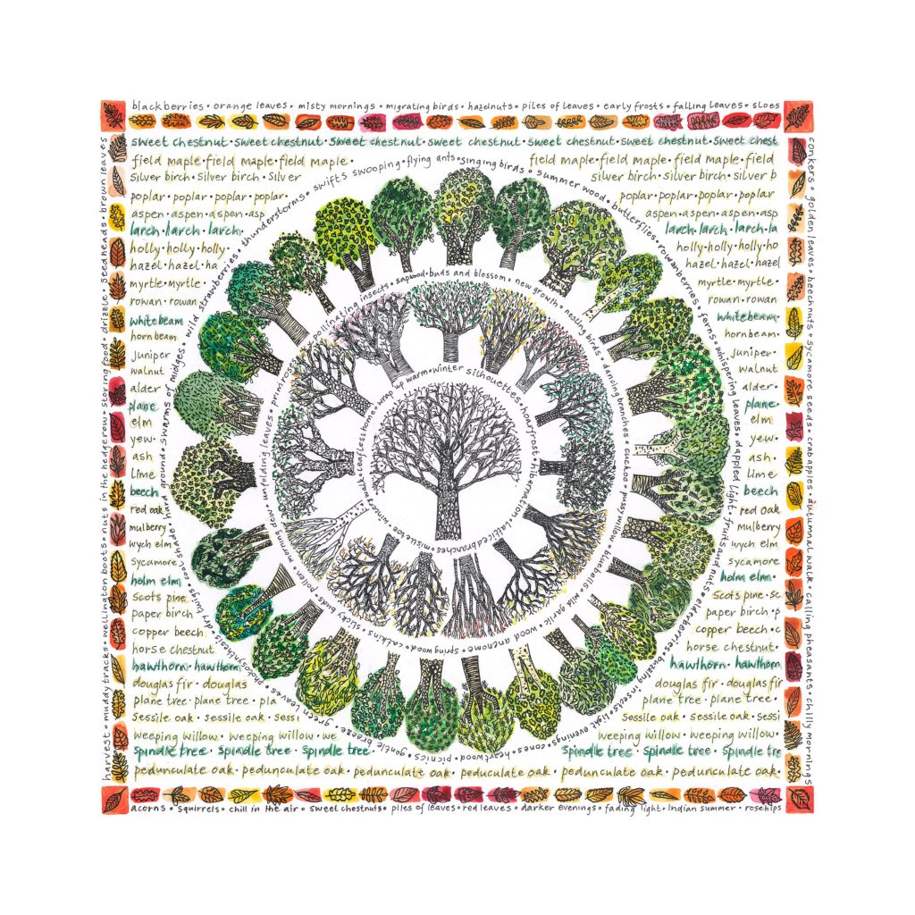 A Year Of Trees - Fiona Willis