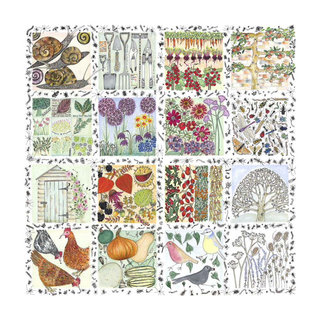 A Year In The Garden - Fiona Willis