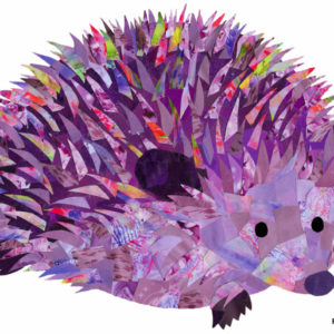 Purple Hedgehog - Holly Collage